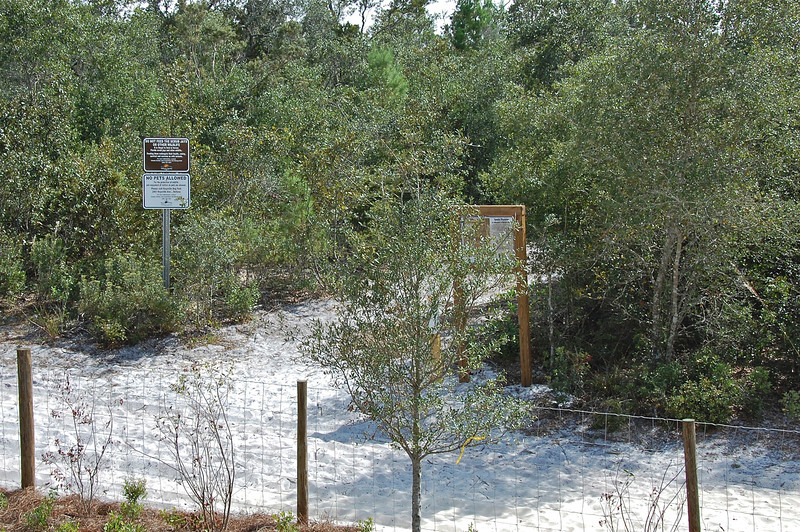 Nature Trails at Lyonia Environmental Center